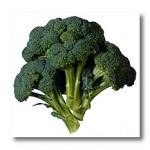 Broccoli, a vegetable known for its nutritional properties