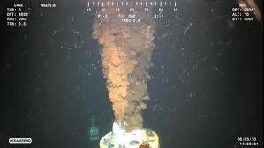 deepwaterhorizonoil