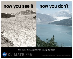 NASA graphic showing the disappearing ice from the Muir Glacier in Alaska between 1941 and 2004.