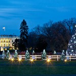 The 2012 National Christmas Tree with the White House in the background. (U.S. Government photo)