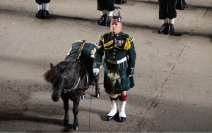 The Black Watch regiment on parade with mascot pony. (Photo credit: Don North)