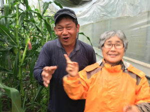 Some Gangjeong village peace activists work at the Peace Farm Cooperative. This cooperative grows corn and beans. (Photo by Ann Wright)