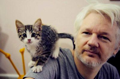 the west is failing Assange