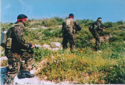 Hezbollah fighters. (Wikimedia)